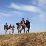 Immigration de masse des pays musulmans. Mise à jour 2013